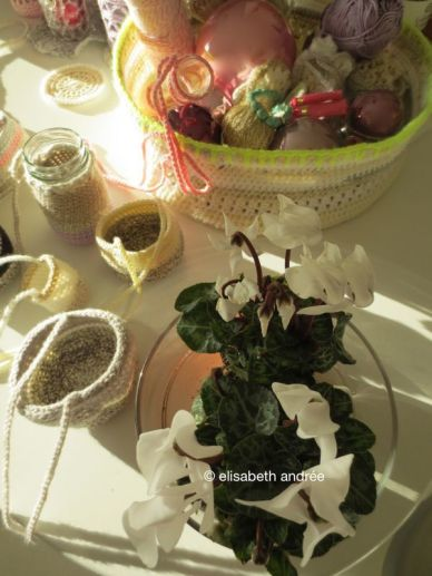 christmas decoration 2013 with small plants