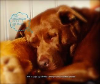 Joya asleep by Mireille and Marijn