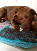Joya on her crochet cushion by Mireille and Marijn